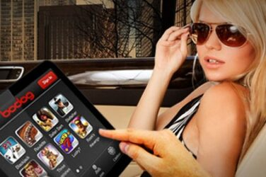Bodog app on mobile devices